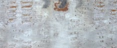 cynografy - Waldemar Regucki